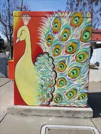 Street Facing Side, San Jose, California