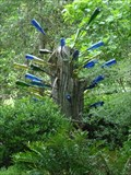 Image for Kanapaha Botanical Gardens Bottle Tree - Gainesville, FL