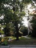 Image for Mary K. Yarnall - Merchantville, NJ