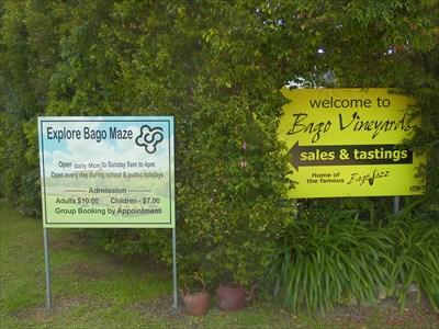 At Bago Vineyard, NSW
