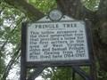 Image for Pringle Tree
