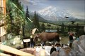 Image for Denali Park Visitor and Nature Center