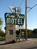 Image for Pine Tree Motel Googie Sign  Lake Geneva WI