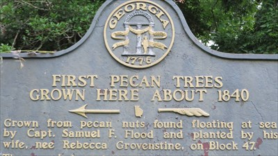 veritas vita visited First Pecan Trees Grown Here About 1840 GHM 020-4