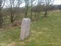Image for Fingerpost - Hendraburnick Down, A39, Cornwall