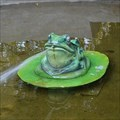 Image for Frog Fountain - Brandenburg, Germany
