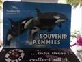 Image for Shamu - Smasher - SeaWorld, Orlando, Florida.