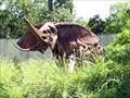 Image for African Elephant - Houston, TX