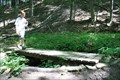 Image for Bruce Trail Bridge 2065