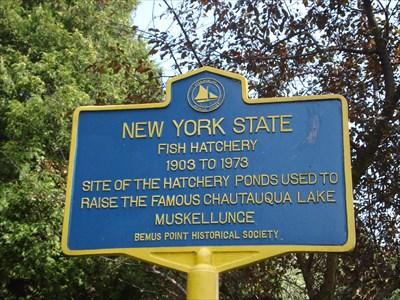 New york state fish hatchery bemus point ny new york for New york state fish