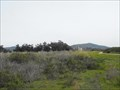 Image for Bluffs Open Space and Seal Sanctuary - Carpinteria, California