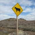 Image for Cow Crossing - Mono County, CA