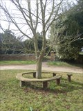 Image for Rest-a-While, Millennium Bench, Upper Stowe, Northants.