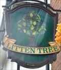Image for Litten Tree - Lake Street, Leighton Buzzard, Bedfordshire, UK.