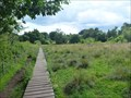 Image for Wybunbury Moss NNR Boardwalk - Wybunbury, Cheshire.