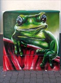 Image for Smiling Frog - Oberursel, Hessen, Germany
