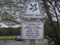 Image for Headley Heath, Surrey. UK