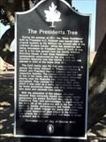 Image for The Presidents Tree - Huntsville, TX