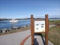 Image for Tuncurry-Forster Ferry Crossing - Tuncurry, NSW