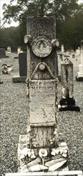 Image for Cole Scho Mathews - Mt. Carmel Cemetery - Mount Carmel, AL
