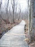 Image for Beaver Lake Nature Center Boardwalk - Baldwinsville, N.Y.
