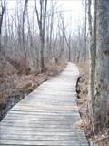 Image for Beaver Lake Nature Center Boardwalk - Baldwinsville, N.Y.