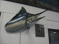 Image for Swordfish - San Pedro, CA
