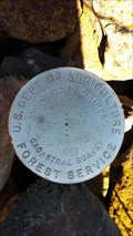 Image for T45N R3W 1/4 S15 S14 'LS 4385' Cadastral Survey Cap - Siskiyou County, OR