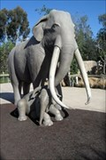 Image for Mother & Baby Elephant -  San Diego, CA