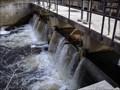 Image for Kirby's Mill Dam - Medford, NJ