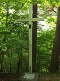 Image for Cross in the wood - Mörsdorf - RLP / Germany