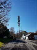 Image for The Funny Pine Cell Tower