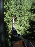 Image for Lynn Canyon Suspension Bridge