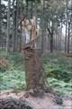 Image for Forest Art - Le Bois des Cahières - Crécy - Somme, France