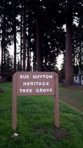 Image for Sue Guyton Heritage Tree Grove - Wilsonville, OR