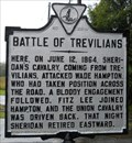 Image for Battle of Trevilians