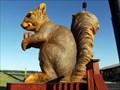 Image for Ms. Pearl, Giant Squirrel - Cedar Creek, TX
