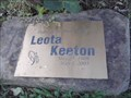 Image for Leota Keeton Memorial Rose Bush - West Fork AR