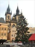 Image for Christmas Tree, Prague, Czech Republic