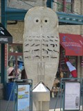 Image for The Great Wise Owl - Winnipeg, MB