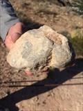 Image for LaVerkin Sponge Fossils - La Verkin, UT