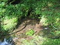 Image for EBBING AND FLOWING SPRING - Rogersville, TN
