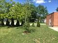 Image for St. Ignatius School Tree - Bothwell, ON