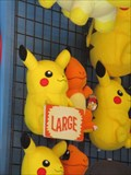 Image for Santa Cruz Beach Boardwalk Picachu - Santa Cruz, CA