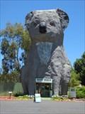 Image for The Giant Koala