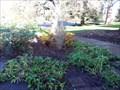 Image for Terry Ann Corliss - University of Oregon - Eugene, OR