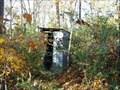 Image for A Tin one found in Gordon County, Gerogia