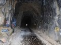 Image for Transcontinental Railroad Tunnel #6 - Donner Summit