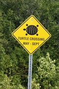 "Image for ""BOAT LAKE""  Turtle Crossing Sign -"