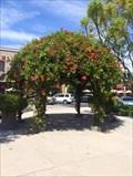 Image for Alice O'Neill Avery Rose Garden - Ladera Ranch, CA